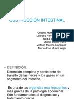 -Obstruccion-Intestinal (2).ppt