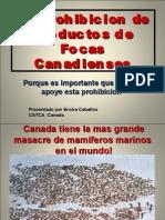 BOICOT CANADA FOCAS