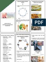 305805216-Leaflet-DIET-Dm.doc