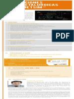 5. Simulaciones Hidrometalurgicas Con METSIM (1)