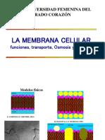 3_La_membrana__celularpara_presentar.ppt