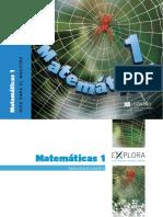 Matemática 1 - Guía de Clase.pdf