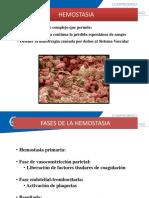 _HEMOSTASIA_-1.pptx