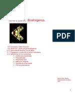 Tema3_b.pdf