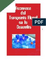 04 Recursos Del Terapeuta