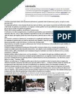 259789090-Democracia-de-Guatemala.docx