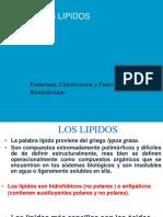 Alipidos Vidal