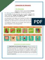 LA DONACION DE ORGANOS.docx