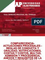 Comparecencia, Actuaciones Procesales, Reglas de Conducta, Oralidad, Notificac.,Oralidad, Costas y Costos, Multas, Otros