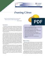 Pruning - Citrus Pruning UofA.pdf