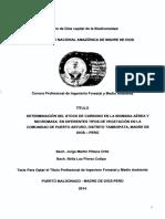 DETERMINACIÓN DEL STOCK DE CARBONO EN LA BIOMASA AÉREA Y NECROMASA EN DIFERENTES TIPOS DE VEGETACIÓN EN LA COMUNIDAD DE PUERTO ARTURO, DISTRITO TAMBOPATA, MADRE DE DIOS-PERÚ