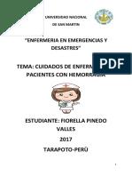 TRABAJO DE HEMORRAGIAS DE MI SEÑORA DE UGARTE 4.docx