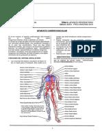 APARATO Cardiovascular y Excretor