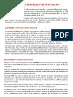 ANIMALES Y PLANTAS EN VIA DE EXTINCIÓN.docx
