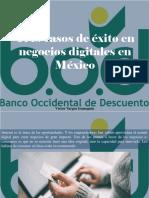 Víctor Vargas Irausquín - Tres Casos de Éxito en Negocios Digitales en México