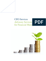 Cfo Services Advisory Services for Financial Managers