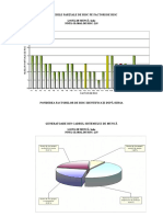Grafice sofer.doc