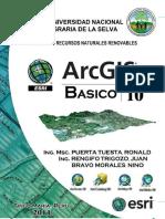 Manual de ArcGIS 10 en Español PDF - Básico