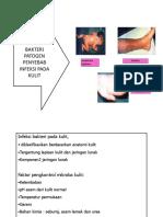 Bakteri Patogen Kulit JP 4 2015 Fix