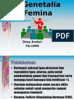 Gen.femina