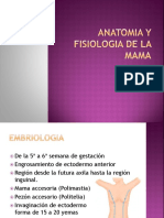 Anatomia y Fisiologia de La Mama