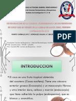 DETERMINACION DE LA CALIDAD MICROBIOLOGICA DE LOS REFRESCOS DE COCO QUE SE VENDEN EN LA CIUDAD DE SANTA CRUZ, PERIODO MAYO-AGOSTO 2015