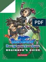 Blue Dragon - Beginners Guide.pdf