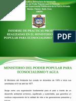 Informe de Practicas Profesionales, Realizadas en El Ministerio Del Poder Popular Para Ecosocialismo y Agua, Coro