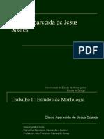 Eliane AP. de J.S. Estudos de Morfologia-2010