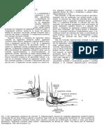 Artroplastia Do Ombro e Cotovelo