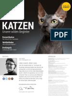 Spektrum Kompakt - Katzen - Unsere Wilden Begleiter