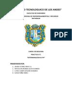Univesidad Tecnologuico de Los Andes