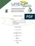 Juan Jose Informe Final Practicas Ambientales 1