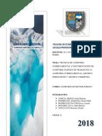 Tecnicas de Auditoria Gubernamental Documentacion de Auditoria