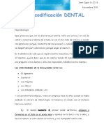 Bio-Dientes- 2.docx