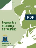 Livro pdf - Ergonomia e segurança do trabalho - Prof MSc Uanderson Rébula