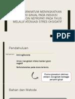 Punica Granatum Meningkatkan Fungsi Ginjal Pada Induksi Gentamicin
