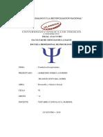 Conductas Excepcionales Uladech VI