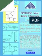 Guia de PIPEPHASE BI Presentacion