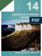 LIVRO 14 DEPÓSITOS E ROCHAS SEDIMENTARES.pdf
