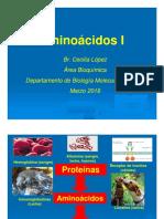 Aminoácidos.pdf