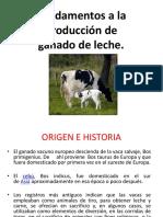 BOVINOS-DE-LECHE.pptx