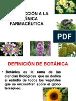 Clase 1 Botanica