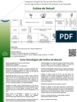 BROCOLI.pdf