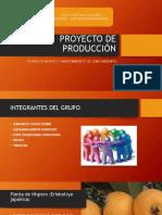 Proyecto de Producción- FISICA I