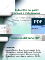 IDP técnica e indicaciones Curso La Fe 2013 CARMONA.pdf