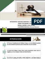 Habeas Corpus Diapositivas