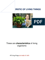 Characteristic of Living Thing