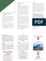 TRIPTICO_DESASTRES_NATURALES.docx