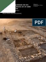 prehistoria Libro Tell Halula Siria.pdf